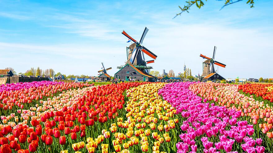 そもそもオランダってどんな国?